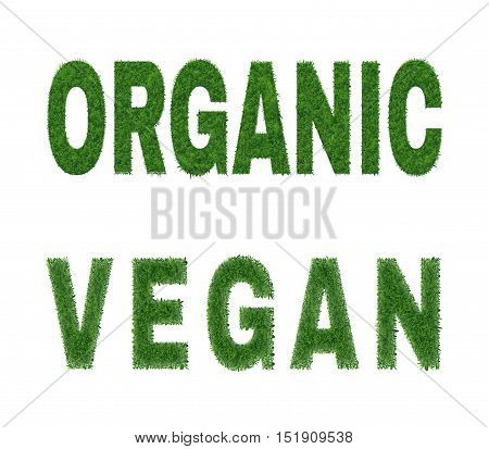 Ecology nature design. The word organic vegan is made of grass. Environmental concept for advertisement healthy food, ecological products, lifestyle, etc. Vector illustration. Horizontal location.