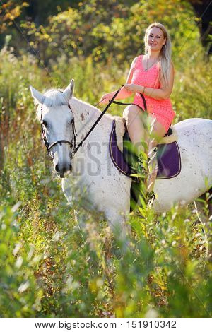 Woman in short pink dress sits on white horse in sunny autumn park
