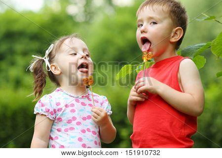 Little pretty girl and boy lick lollipops in summer green park