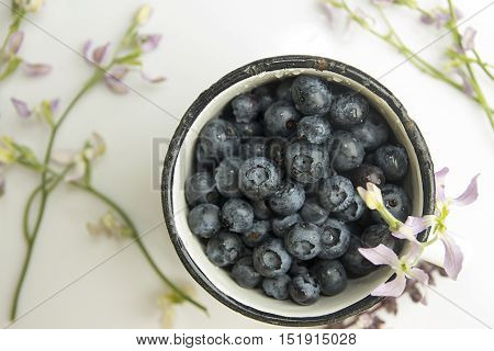 Bilberry In Enameled Mug