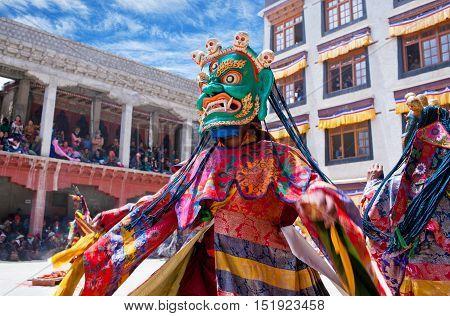 Buddhist Monk Dancing Cham Mystery In Lamayuru, India