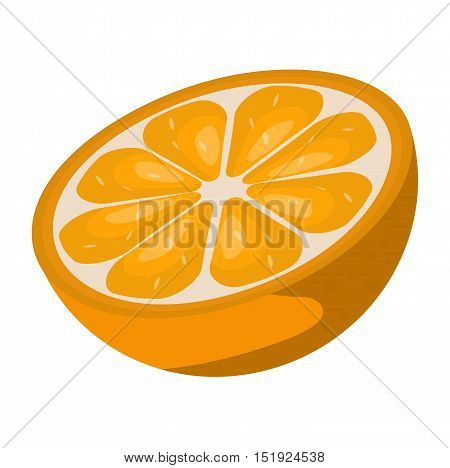 Slice of fresh orange isolated on white background fruit. Orange slice vector citrus food, orange slice juicy organic sweet vitamin. Tasty healthy cut exotic fruit.