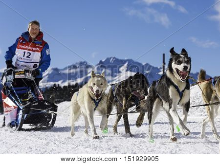 SARDIERES VANOISE FRANCE - JANUARY 20 2016 - the GRANDE ODYSSEE the hardest mushers race in savoie Mont-Blanc Philippe Pontier french musher Vanoise Alps