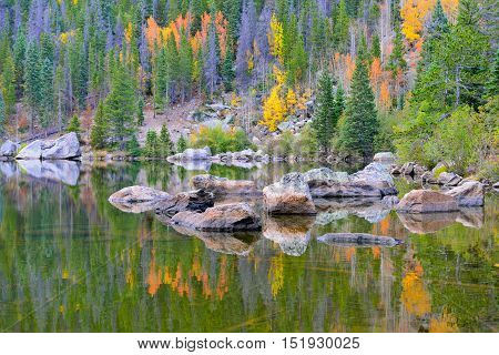 Yellow And Red Aspen Reflecting In Alpine Lake In The Fall