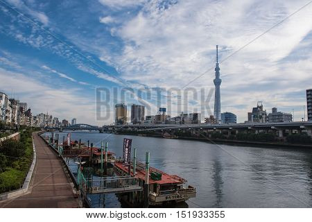 TOKYO  , JAPAN - OCTOBER 13 ,2016 : morning view Skytree of Sumida River at asakusa , The Tokyo Skytree is the tallest tower in the world