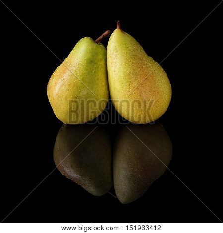 Two pears with water drops isolated on a black glossy background with realistic reflection