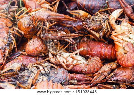 background heap of red boiled crayfish with spices