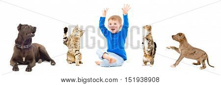 Group of a animals and happy child together isolated on white background