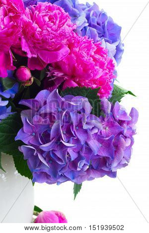Bright pink peony and blue hortensia fresh flowers bouquet close up isolated on white background