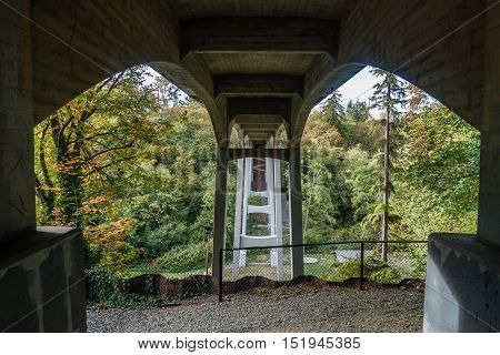 A view from beneath the bridge at Saltwater State Park in Washington State.