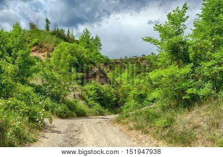 Dirt road on the Tokaj Hill in Hungary. Hungarian countryside. Cloudy blue sky.  Tokaj wine region. Green plants.