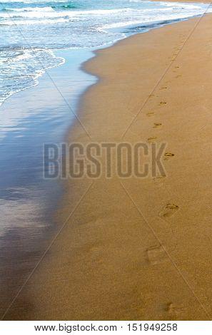Human footprints on the wet Golden sand