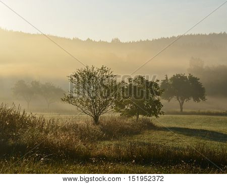 view of mystical sunrise South Bohemia Czech Republic