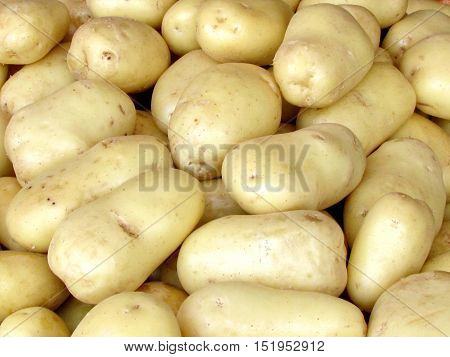 The white potatoes on bazaar in Tel Aviv Israel May 24 2012