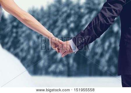 Winter Wedding Couple, Bride And Groom Holding Hands Over Snowy Forest Background