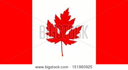 Canada: Canadian Maple Leaf Flag With Real Maple Leaf illustration