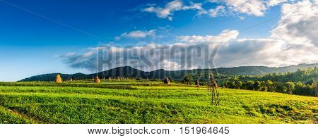 panorama with haystacks in a rural field near the forest at the foot of the mountain at sunrise