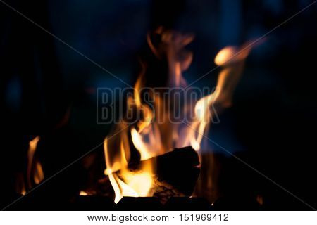 bright warm fire. The concept of nature.
