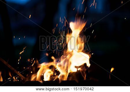 bright fire with sparks. The concept of nature.