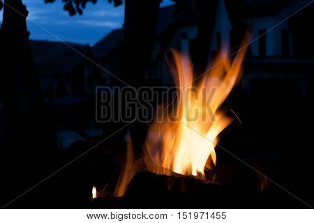 burning bright flame. The concept of nature.