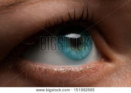 Woman eye with contact lens applying, macro. Blue dilated pupil, eyeball, iris