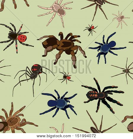 Spiders vector set pattern on light background