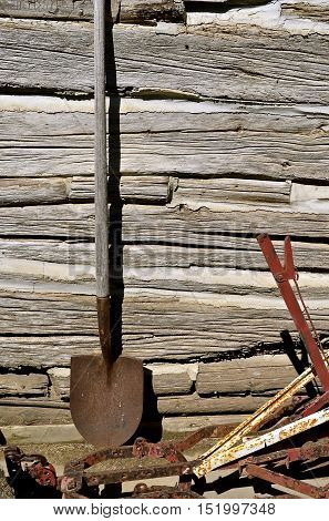A lone rusty spade leans against the wall of an old cabin with chinking between the logs
