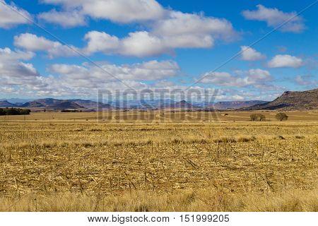 Orange Free State Panorama, South Africa