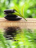 stock photo of green leaves  - zen stones and water reflection showing spa concept - JPG