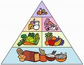 picture of food pyramid  - Cartoon Food Pyramid - JPG