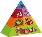 pic of food groups  - 3d food pyramid items - JPG