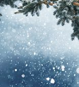 Winter Christmas background with fir tree branch and cones.Merry christmas and happy new year greeti poster