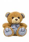image of teddy-bear  - A plush Teddy Bear isolated on white - JPG