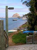 Path At Morro Bay, Vertical