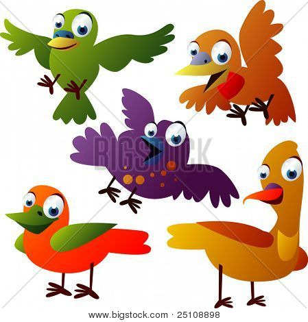 vector animal set 30: birds