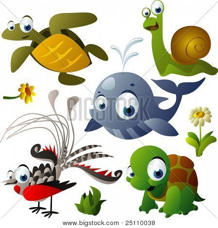 2010 animal set: turtle, tortoise, whale, snail, lyrebird