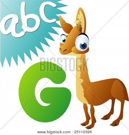 animals alphabet: G is for Guanaco