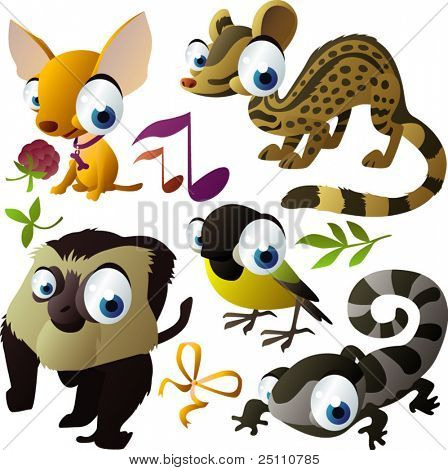 vector animal set: chihuahua, zibeth, monkey, titmouse, newt