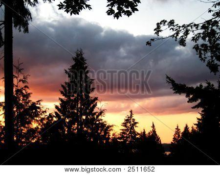 Issaquah Sunset V2