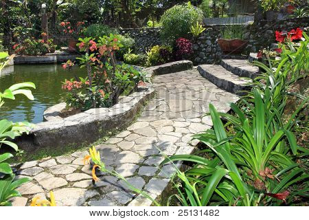 Beautiful natural garden with pond