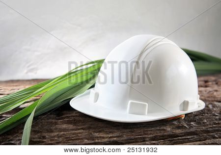 Concept shot of environmental friendly industry