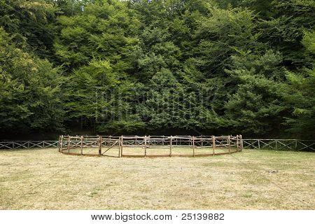 Foresta Umbra, Apulia, Italy, horse fence