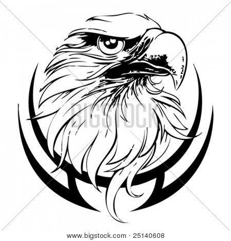 Eagle Head Line Art Vector Illustration