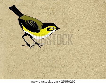 tomtit on grunge background