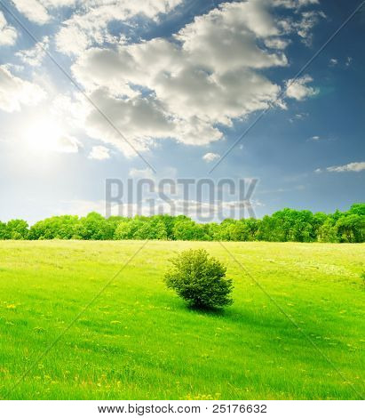 green hill and blue cloudy sky