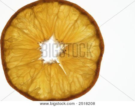 Baclklit Orange Slice Isolated On White