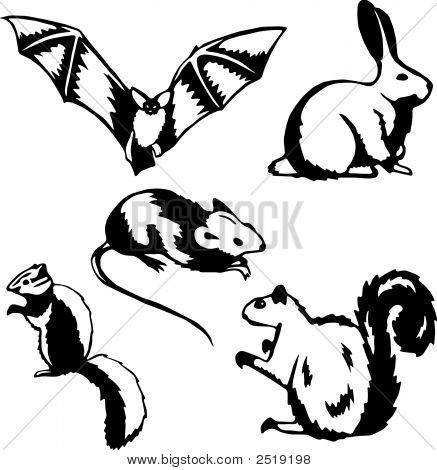 Rodents.Eps
