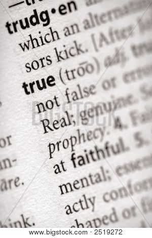 Dictionary Series - Philosophy: True
