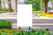 Mock Up. Outdoor Advertising, Blank Billboard Outdoors, Public Information Board In The Park. poster