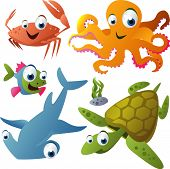 picture of sea-turtles  - vector animal set 21 - JPG